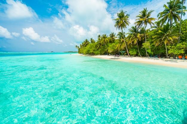 Drøm dig væk til Caribien – og gør drømmene til virkelighed